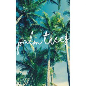 duschy palm trees